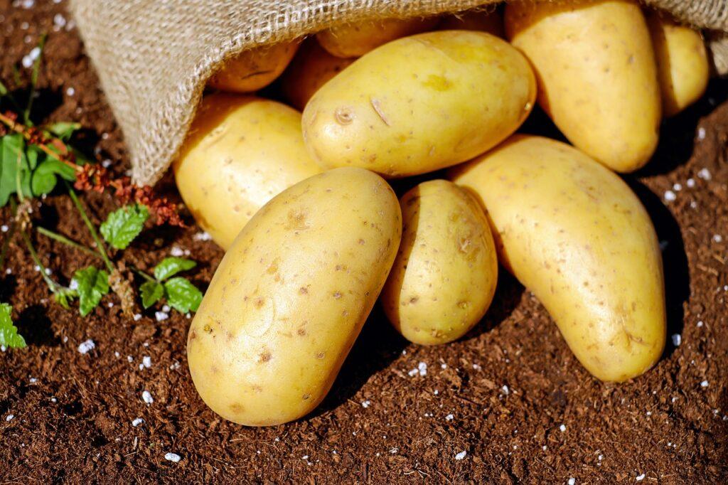 potatoes, vegetables, tuber